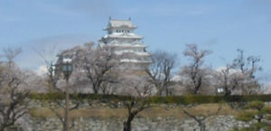 兵庫の国宝姫路城